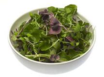 Mixed Micro Salad